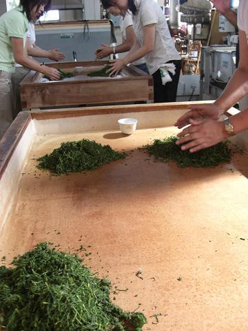 金谷での体験・・・No.4 「手揉み茶を作る」_c0079828_236610.jpg