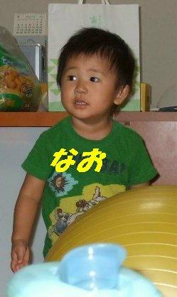 a0091579_1516365.jpg