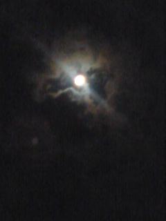 今夜は月がキレ~イ♪♪_f0082612_23512314.jpg
