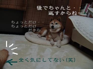 f0086814_1254674.jpg