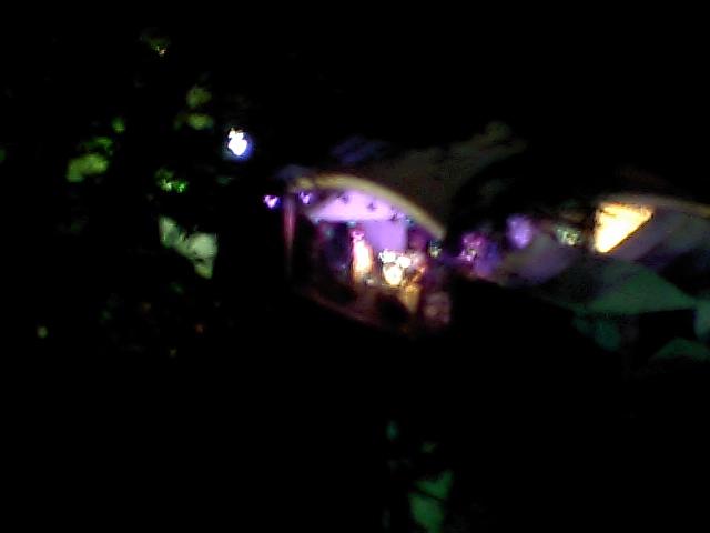 いしがきミュージックフェスティバル_e0012815_2139110.jpg
