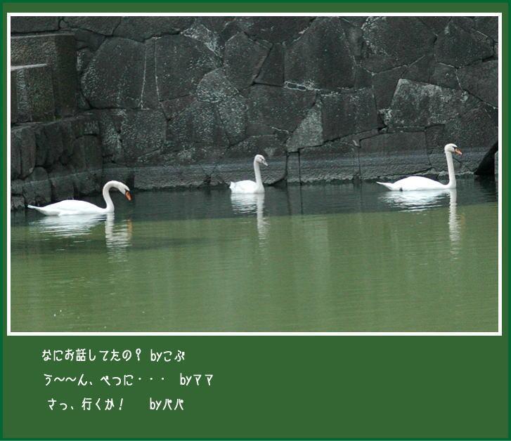 f0012718_22384055.jpg