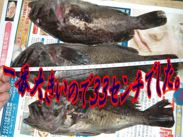 f0147821_23271769.jpg