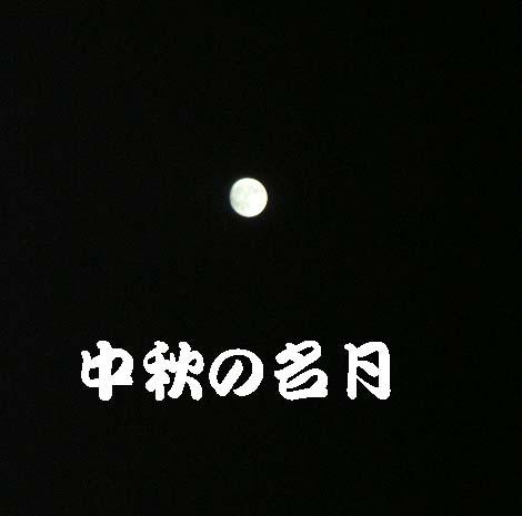 d0081025_2015347.jpg