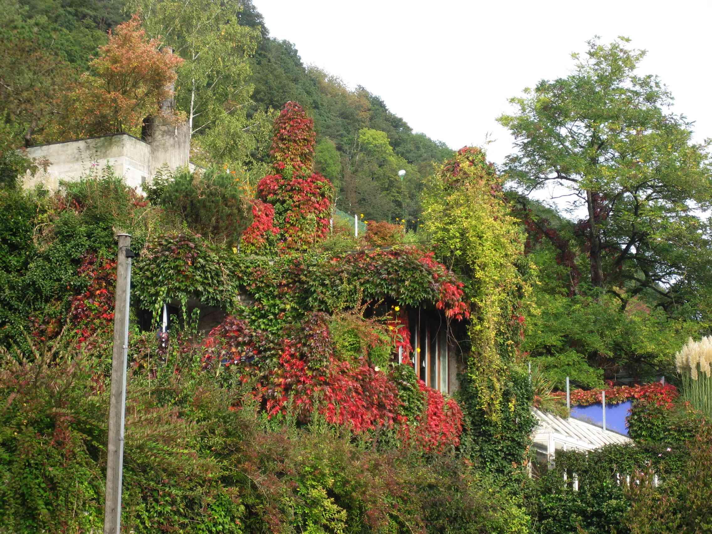 秋のスイスより_a0088827_22274239.jpg