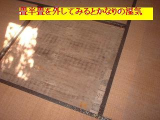 f0031037_1631737.jpg