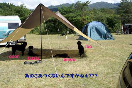 f0018144_1457520.jpg