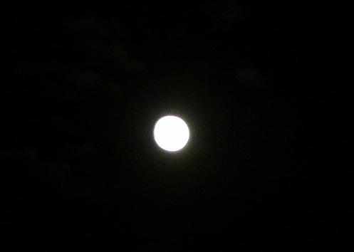 仲秋の名月に 想いをはせて。。。 *。:☆.。_a0053662_19241110.jpg