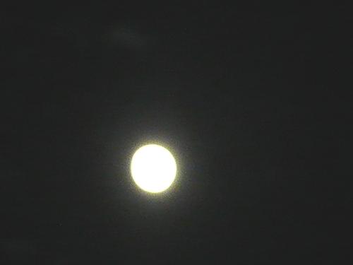 仲秋の名月に 想いをはせて。。。 *。:☆.。_a0053662_19384679.jpg