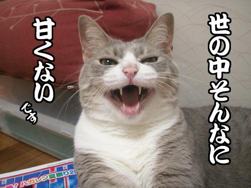 はぁ~_b0083267_207527.jpg