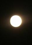 中秋の名月ですね(^^♪_b0103889_2344860.jpg