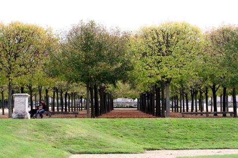 ベルサイユ宮殿の庭園・・・その2_c0090198_4335187.jpg