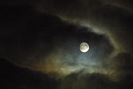 十五夜_a0097735_18817.jpg