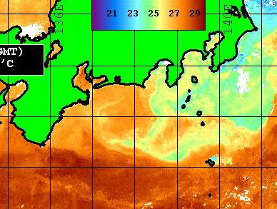 房総 野島沖には 北関東の潮が入ってきているってことは・・・もしかしたら・・・_f0009039_18292753.jpg