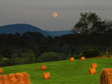 Harvest Moon by Neil Young_f0147840_0332086.jpg