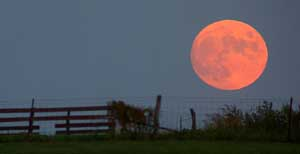 Harvest Moon by Neil Young_f0147840_042887.jpg