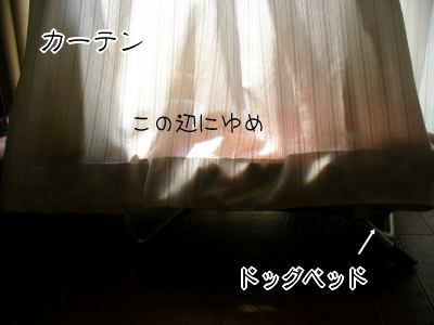 f0043658_21421362.jpg