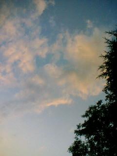 中秋の名月、、?_c0133561_23149.jpg