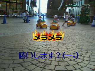 e0046771_1231987.jpg