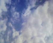 b0118991_1757521.jpg