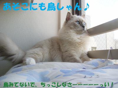 f0014893_13575274.jpg