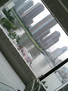 おはょぉん(*\'-^)-☆_c0038100_10485678.jpg