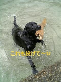まだまだ水遊び!_f0148927_1941694.jpg