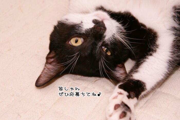 f0142061_7144859.jpg