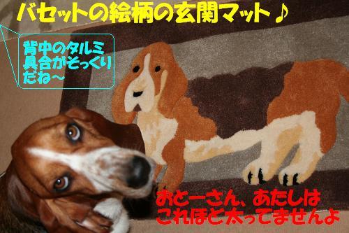 f0121712_15451974.jpg