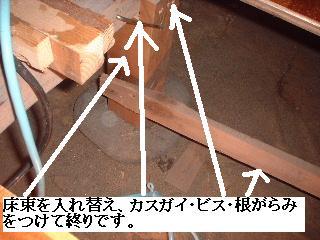 f0031037_175127.jpg
