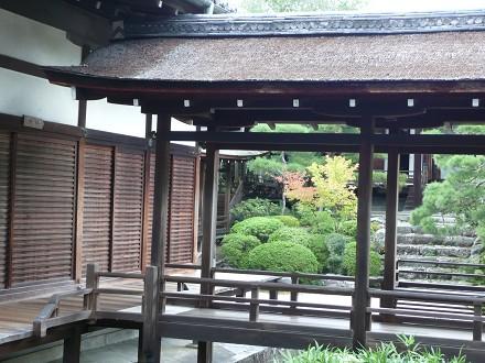 小さい秋を探しに京へ vol.3 御室仁和寺_c0057946_19281315.jpg