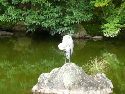 小さい秋を探しに京へ vol.3 御室仁和寺_c0057946_19285319.jpg