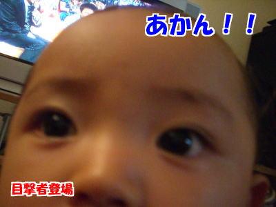 d0020869_1754538.jpg