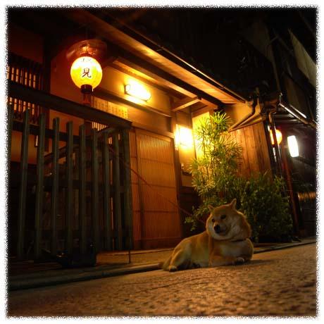 GX100 夜の散歩 祇園_c0122685_044021.jpg