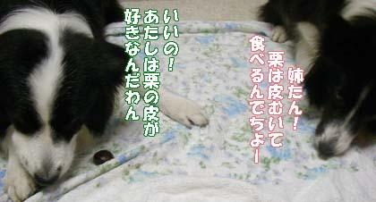 f0114893_834338.jpg