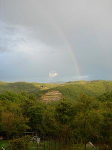 虹を見た朝_f0106597_2020989.jpg