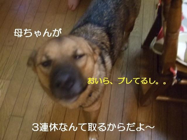 b0087400_22452310.jpg