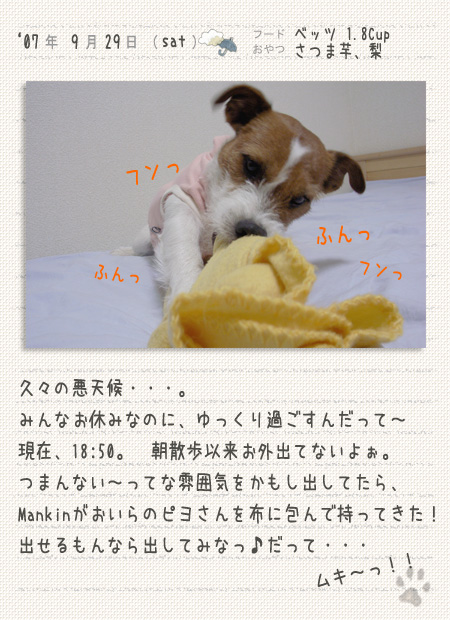 b0040323_1850054.jpg