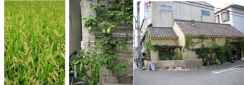 2007.9.28(金)晴れ_e0090670_22204468.jpg