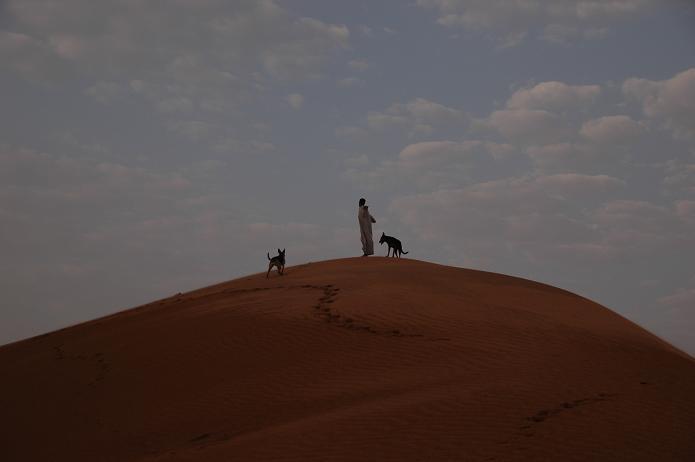 散歩に行くとかならず登るちょっと高い砂丘_e0066474_2102083.jpg