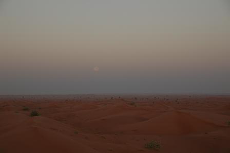 その砂丘からぐるっと360度。_e0066474_216382.jpg