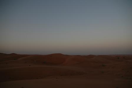 その砂丘からぐるっと360度。_e0066474_219084.jpg