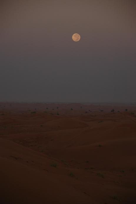 お月見。_e0066474_2562886.jpg