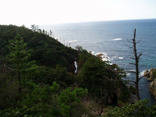 ★☆鳥取・島根ドライブ旅行☆★_d0044938_14105234.jpg