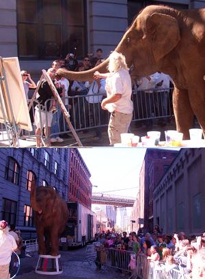 ゾウの絵描きさん Dumbo Art Under the Bridge Festival_b0007805_22162769.jpg