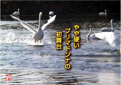 b0092707_7205368.jpg
