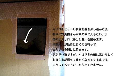 b0091132_55089.jpg