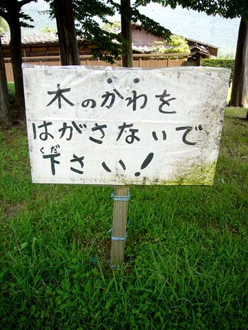 a0020941_2010964.jpg