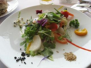 50種の野菜がそれぞれ味付けされたガルグイユ♪