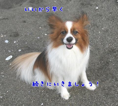 d0013149_0141686.jpg
